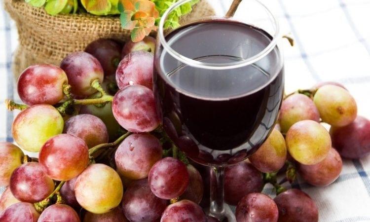 Realizan Seminario para mejorar antioxidantes en Cepas de Viñas chilenas