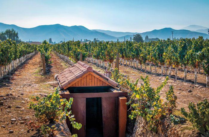 Chile's Cabernet Country is Ripe with Winemaking Innovation